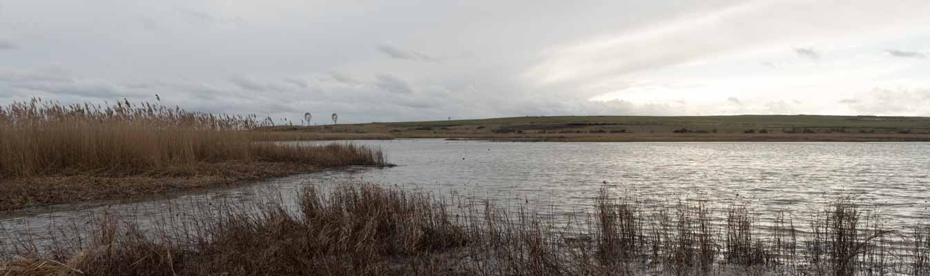 Old Saltings at Bowers Marsh