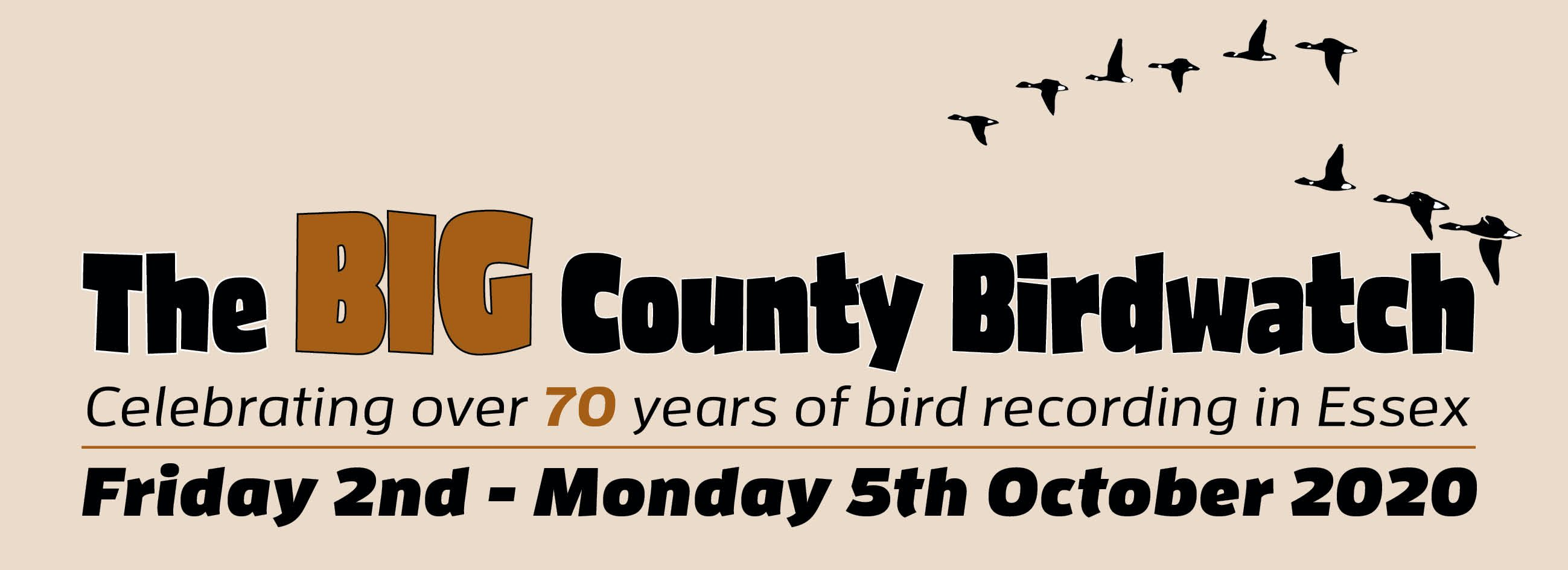 Big County Birdwatch