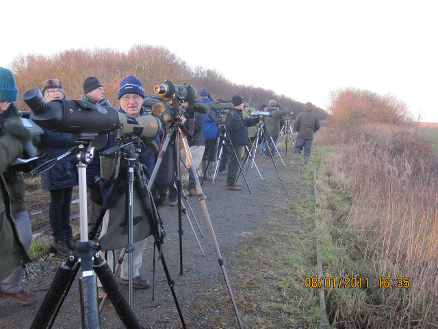 The wait for Cranes and Harriers at Stubbs Mill 8th January 2011 - we took over the viewing area as usual - but in a nice way! - (Denis Tuck)
